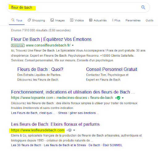 recherche-google-boutique-mono-produit