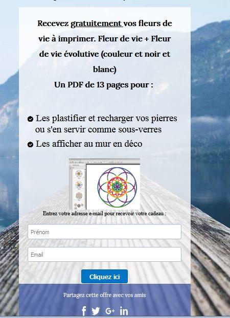 pop up systeme.io sur wordpress